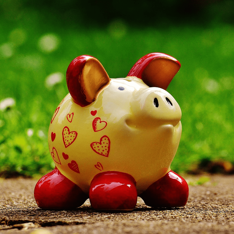 Photo of a cute piggy bank that is outside on the ground