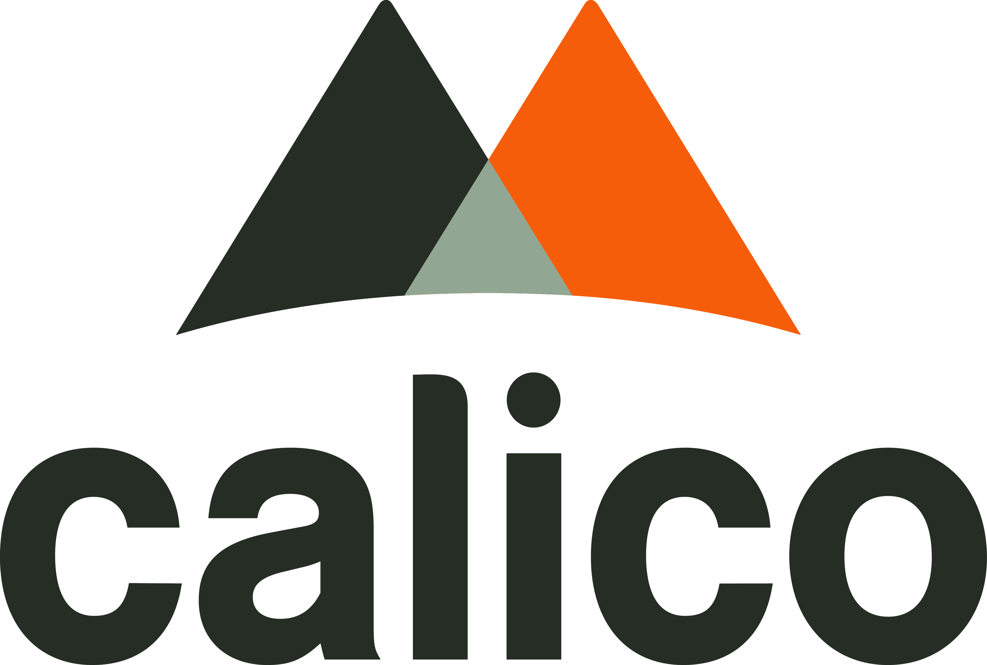 Calico Logo