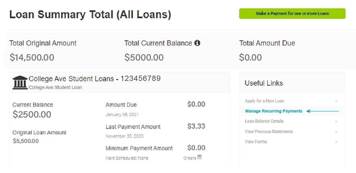 Snapshot of Loan Summary Screen